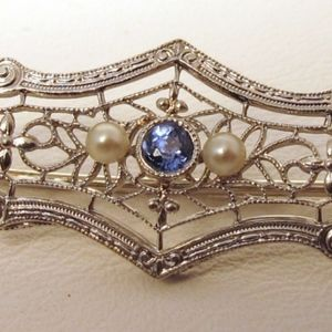 👑14K White Gold Edwardian Broach with 14K Chain